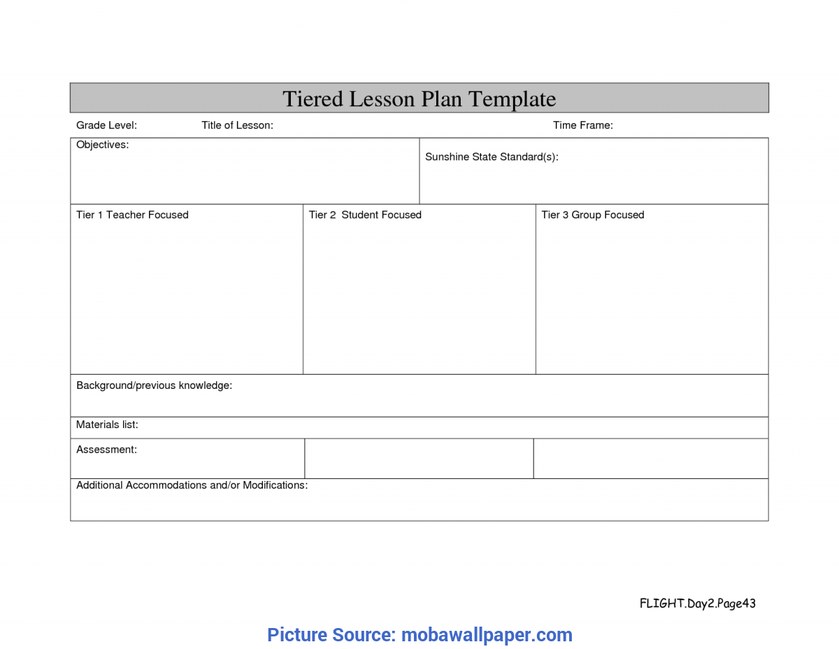 Great differentiated instruction lesson plan template pdf for Outstanding lesson plan template