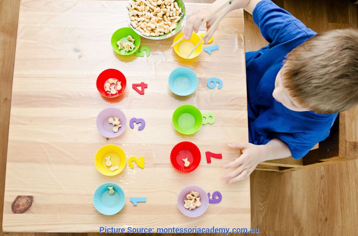Simple Early Learning Activities For 2 Year Olds Montessori Education Program | Infants, Toddlers And Preschool Pro
