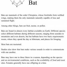Best 1St Grade Lesson Plan On Habitats Bat, Habitat, Science, Natural Science, Interactive, 1St Grad
