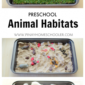 Best Animal Science Activities For Preschoolers Animal Habitats For Preschoolers €? | Pintere