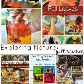 Best Fall Science Activities Fall Science Activities And Experiments Perfect For Young