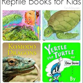 Best Reptile Lesson Plans For Toddlers Best 25+ Reptiles Preschool Ideas On Pinterest | Frogs Preschoo