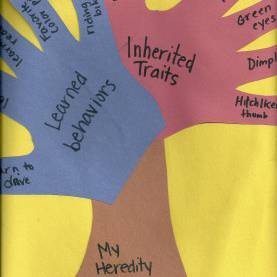 Complex 1St Grade Lesson Plan On Heredity Heredity Tree; Fantastic For Student Side Of Science Noteboo