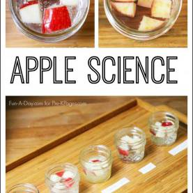 Complex Easy Science Activities For Elementary Students Apple Science Experiment | Easy Science Experiments, Scienc