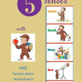 Complex Lesson Plan For Teaching 5 Senses Resources To Teach Kids About The 5 Senses + Sensory Issue