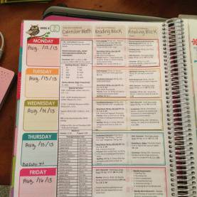 Excellent Lesson Plan For Teachers Diary Erin Condren Teacher Planner Lesson Plan Template | Teache