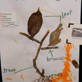 Excellent Preschool Lesson Plans About Trees Parts Of A Tree | Education | Pinterest | Kindergarten Scienc