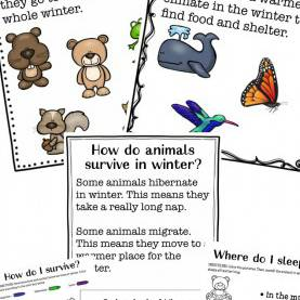 Fresh Preschool Lesson Plans About Winter Animals The Ultimate Winter Animals For Preschool Activities - Natura