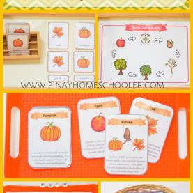 Great Autumn Literacy Activities September Preschool Unit Autumn Themed Early Literacy Activitie