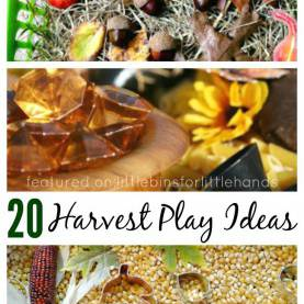 Interesting Fall Harvest Activities For Kids Harvest Sensory Bins For Fall Sensory Play | Sensory Pla