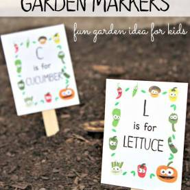 Interesting Pre-K Gardening Lesson Plans Best 25+ Preschool Garden Ideas On Pinterest | Preschool Flowe