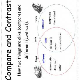 Regular 3Rd Grade Lesson Plans On Compare And Contrast Wonders Second Grade Unit Four Week One Print