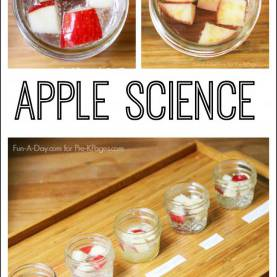 Regular Science Activities For Kindergarten Best 25+ Kindergarten Science Ideas On Pinterest | Kindergarte