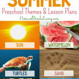 Regular Summer Theme Lesson Plans For Preschoolers 35+ Best Summer Preschool Themes And Activities - Natural Beach Li