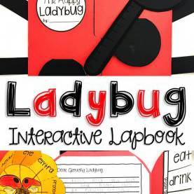 Simple 5E Lesson Plan Life Cycle Ladybug Life Cycle, Stem And Craft With 5E Lesson Plan | Ladybu