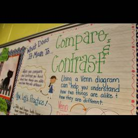 Simple Compare And Contrast Lesson Plan Life In First Grade: Compare And Cont