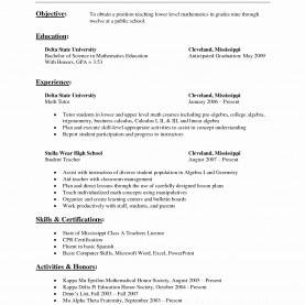 Simple Lesson Plan Format Engineering College 55 Elegant Pics Of Sample Resume Format For Assistant Professor I