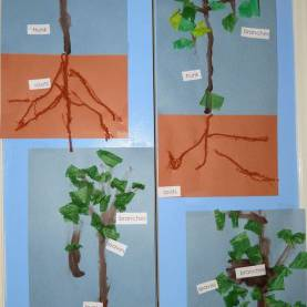 Simple Tree Activities For Preschoolers 113 Best Tree Theme- Weekly Home Preschool Images On Pinteres