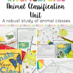 Special Lesson Plan In Science Vertebrates Vertebrates And Invertebrates Animal Classification Uni