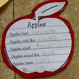 Top First Grade Lesson Plans On 5 Senses Denise - I Thought Of Your Apple Day Lesson When I Saw This -