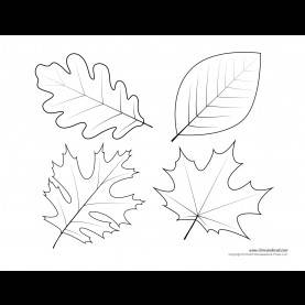 Top Leaves Template Preschool Leaf Template Printable - Commonpenc