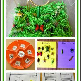 Trending 2Nd Grade Insect Lesson Plans Insect Unit-> Includes Ideas For Math, Science, Literacy, An