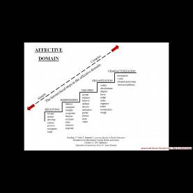 Trending Affective Domain Examples Presentation Video On Writing Learning Objectives Final Goal - You