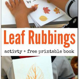 Typical Autumn Science Activities 589 Best Fall Activities Images On Pinterest | Preschool Craft