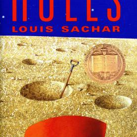 Typical Lesson Plans For Book Holes Holes Teaching Guide | Schola