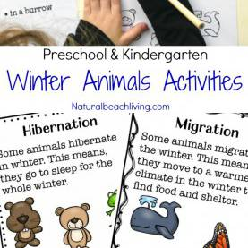 Useful Preschool Lesson Plans Winter Animals The Ultimate Winter Animals For Preschool Activities - Natura