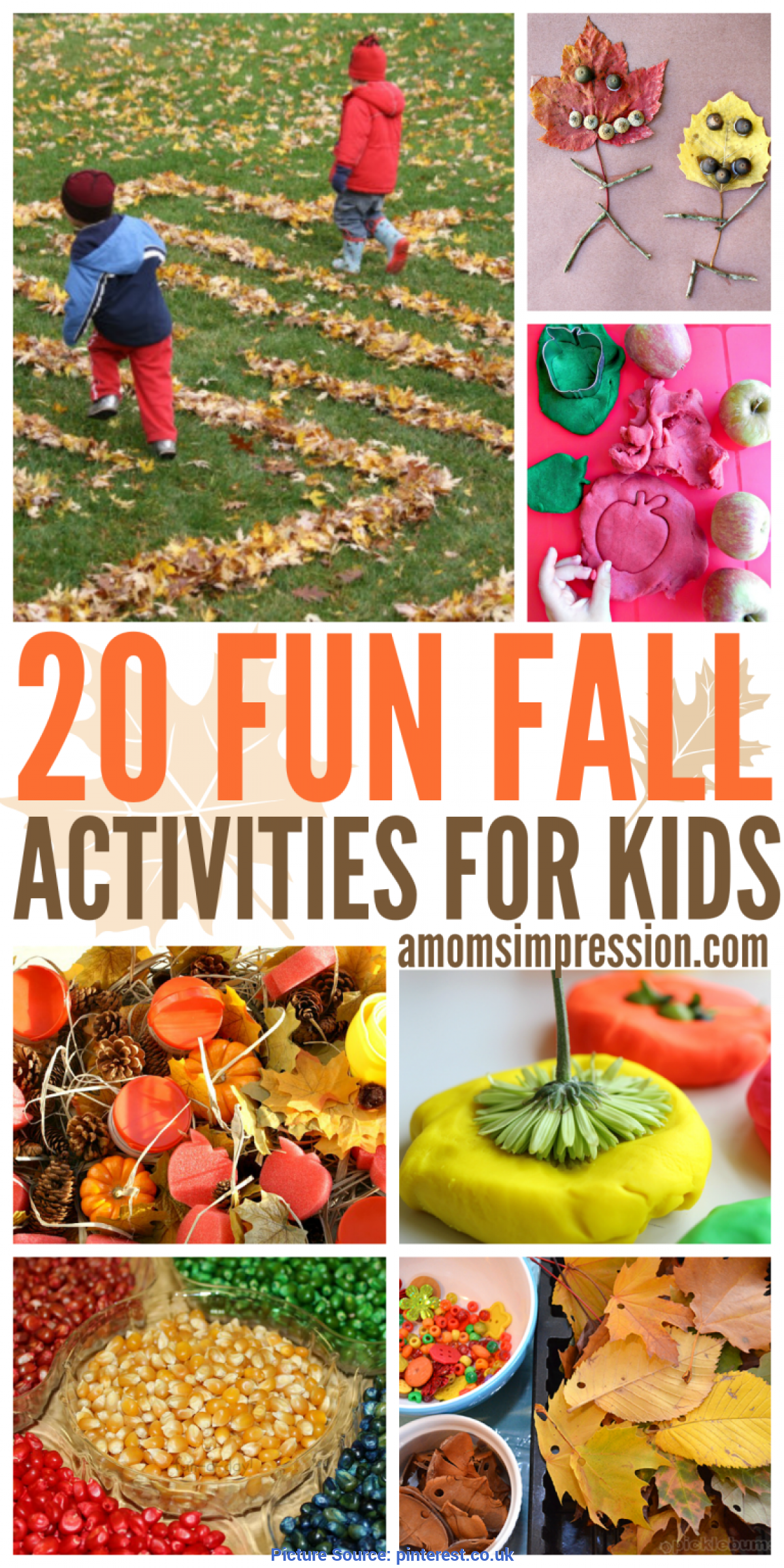 Typical Fun Fall Activities For Kids 20 Fun Fall Activities For Kids | Fun Fall Activities, Outdoo
