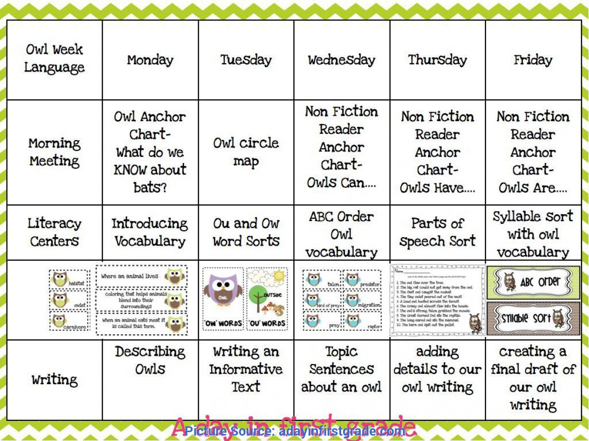Valuable First Grade Lesson Plans For December A Day In First Grade   Getting Ready For A Week Of O