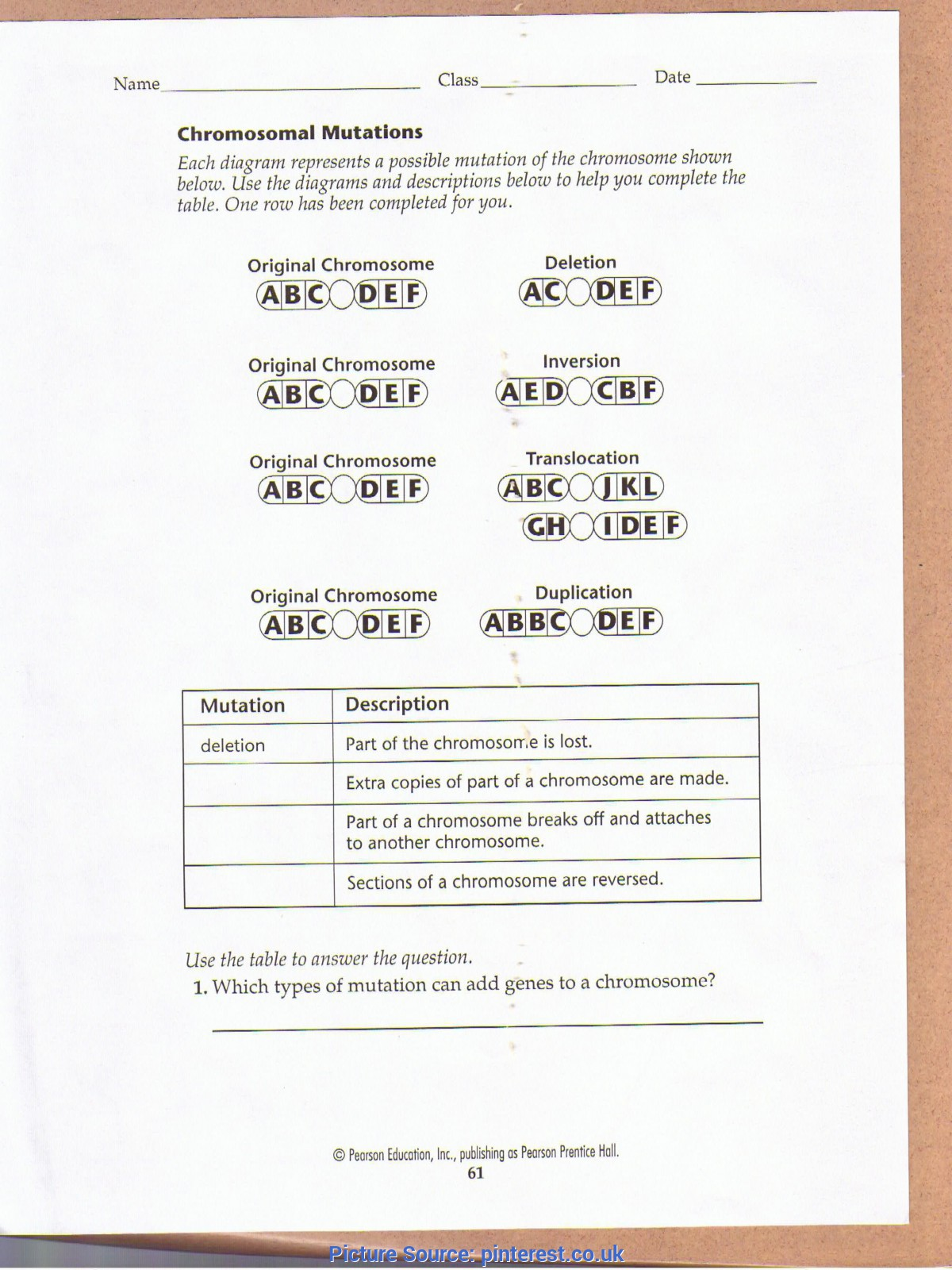 Valuable High School Biology Lesson Plans Genetics Chromosomal Mutations Worksheet | Education | Pinteres