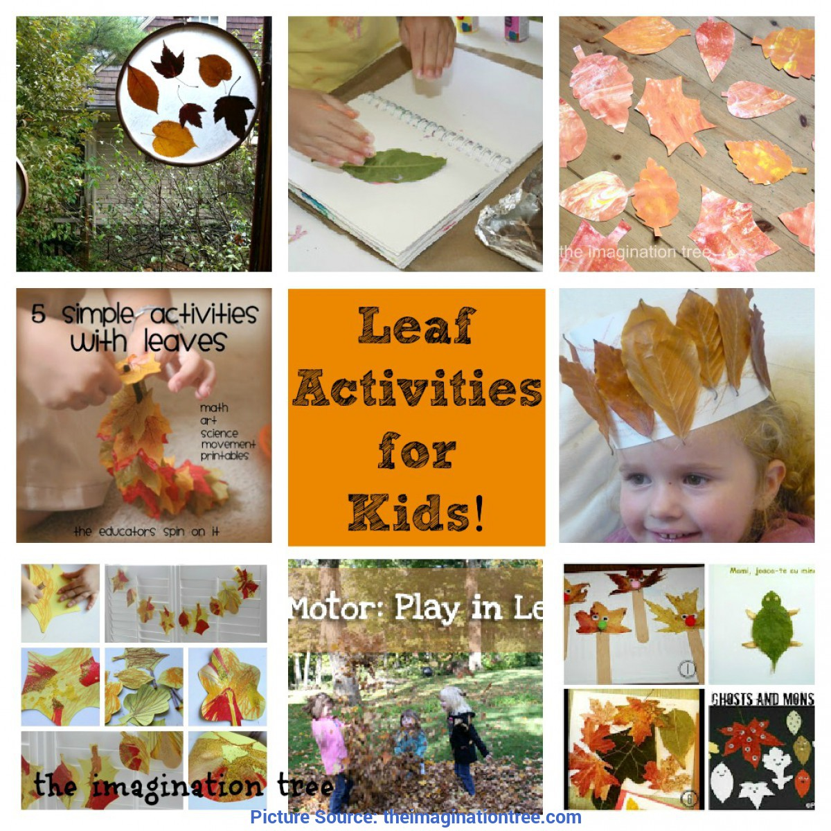 Simple Fun Activities With Leaves Leaf Activities For Kids! [From It'S Playtime] - The Imagination