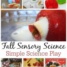 Best Fall Science Activities For Toddlers Fall Science Activities And Experiments Perfect For Young