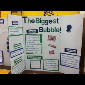 Best Lesson Plan For Science Fair Projects Science Fair Fun! - The Resourceful R