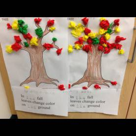 Best Why do Leaves Change Color In The Fall Kindergarten Fall Leaves | The Kindergarten All-S
