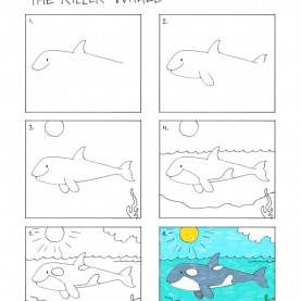 Briliant Drawing Lessons For Kids Draw-A-Killer-Whale.Jpg 1,159×1,500 Pixels | Elementary Lesso