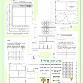 Complex 2Nd Grade Sub Plans 2Nd Grade Emergency Sub Plans - The Curriculum Corne
