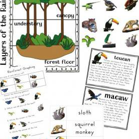 Good Rainforest Lesson Plans For Toddlers Best 25+ Rainforest Crafts Ideas On Pinterest | Rainfores