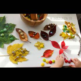 Interesting Autumn Maths Activities Autumn Leaves And Gems Colour Sorting Activity - The Imagination