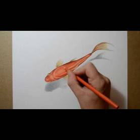 Regular 3D Drawing Lessons Draw Drawing Tutorial How To Draw Pencil Drawing 3D Drawin