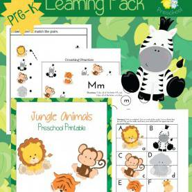 Simple Jungle Lesson Plans For Toddlers Best 25+ Jungle Preschool Themes Ideas On Pinterest | Jungle Them