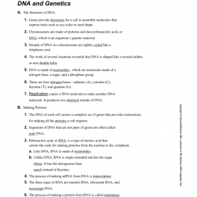 Special Lesson Outline Lesson 3 Science Answers Lesson 3 Outline With Ans