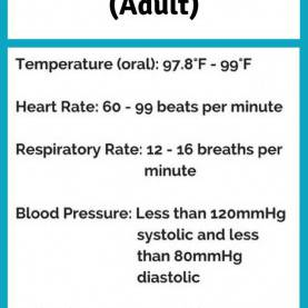 Special Lesson Plan For Teaching Vital Signs Best 25+ Vital Signs Ideas On Pinterest   Vital Signs Nursin