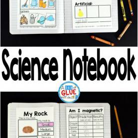 Top Science Lessons For 1St Grade Best 25+ First Grade Science Ideas On Pinterest   First Grad
