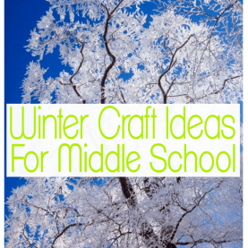 Top Winter Art Projects For Middle School Craft Ideas For Middle Sc