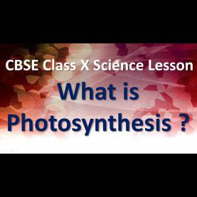 Trending English Lesson Plan For Class X Photosynthesis | What Is Photosynthesis ? | Cbse Class X Scienc
