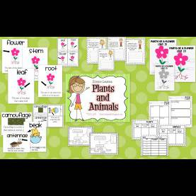 Typical First Grade Science Lessons Life In First Grade: New Science Unit (Plants And Anim