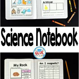Typical First Grade Science Topics Science Notebook | Science Topics, Science Notebooks And Kinderga
